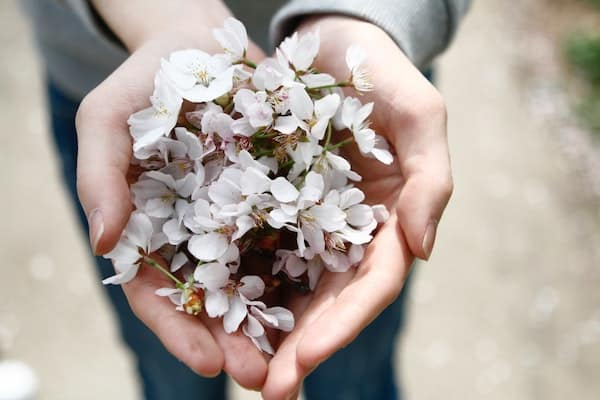 Woman manifesting love and holding light pink flowers in her hands.